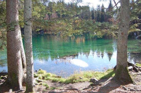 Le lac vert - Passy